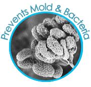 remove-mold-bacteria